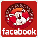 Pagina do Facebook da Escola Its All About Dogs