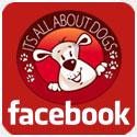 Pagina do Facebook da Escola Its All About Dogs