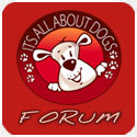 Forum da Escola Its All About Dogs