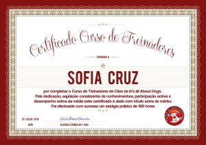 Certificado CTC Sofia Cruz Small
