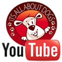 Canal Youtube da Escola Its All About Dogs